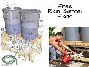 Build your own rain barrel wny handyman for How to make your own rain barrel system