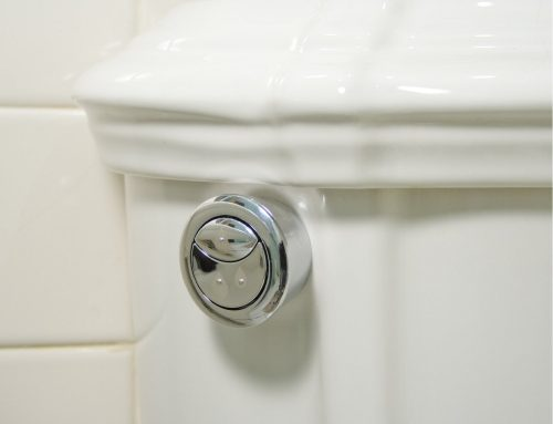 Dual Flush Toilet Options – Easy to Not so Much