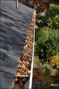 gutters filled with leaves
