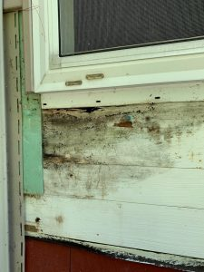 Mold under a window without proper flashing / weather proofing